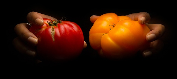 Tomato-Top-Slider-Image copy