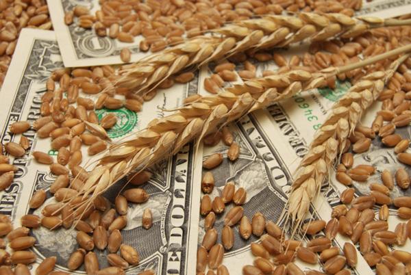 food_money