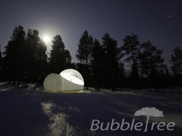 cort-bubble-tree-1