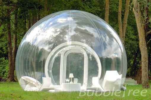 cort-bubble-tree
