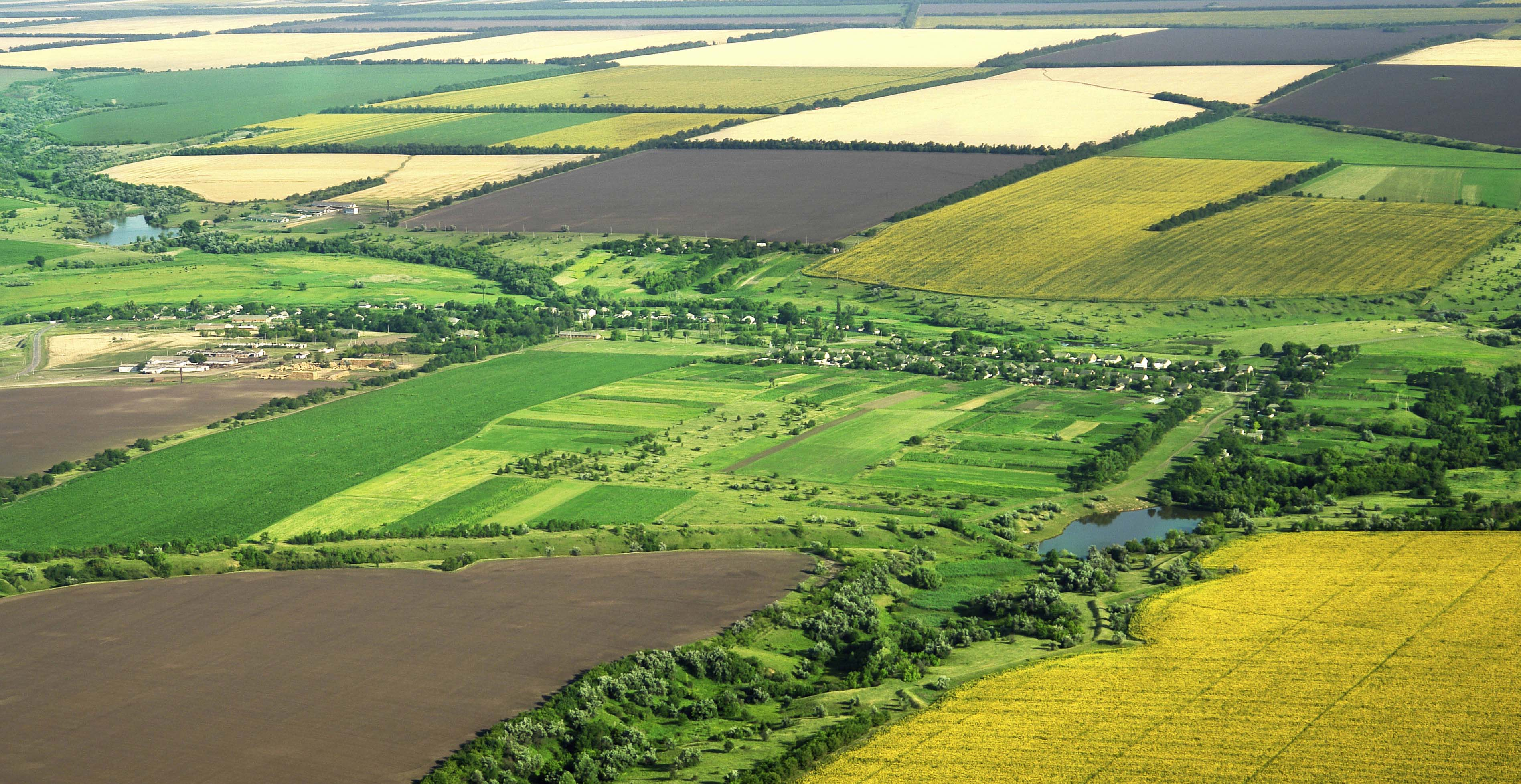 terenuri_agricole