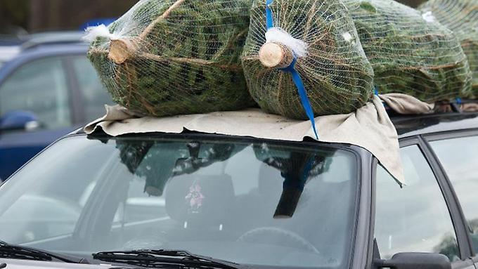 Wer-seinen-Weihnachtsbaum-auf-dem-Autodach-transportieren-will-sollte-ihn-mit-Spanngurten-sichern