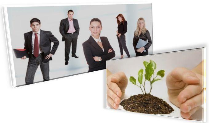 -Firma-de-Incredere---un-nou-trend-de-promovare-a-business-ului-printre-companiile-din-Romania