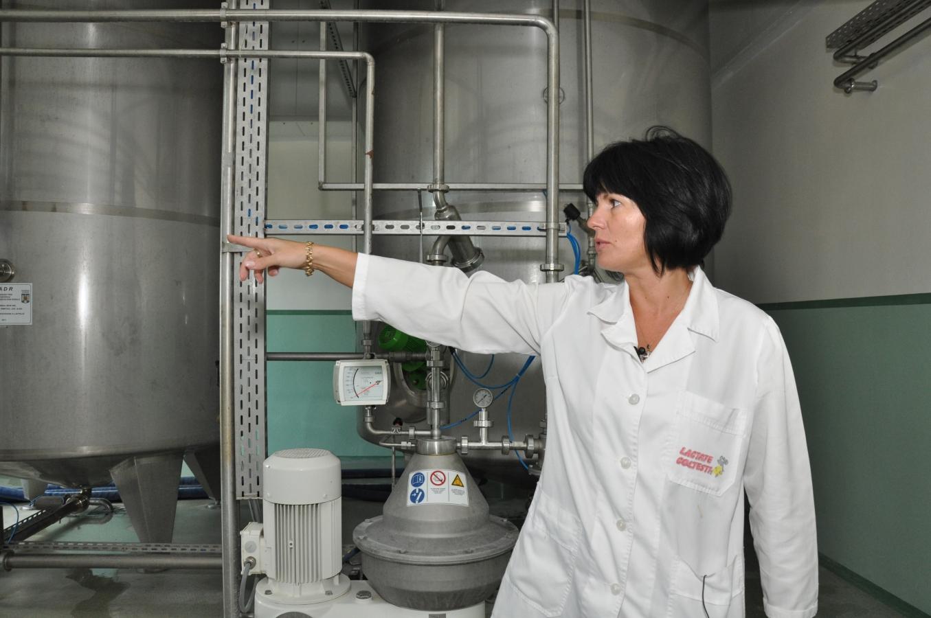 poveste-de-succes-femeia-care-produce-milioane-de-euro-din-lapte-si-turism1347197506