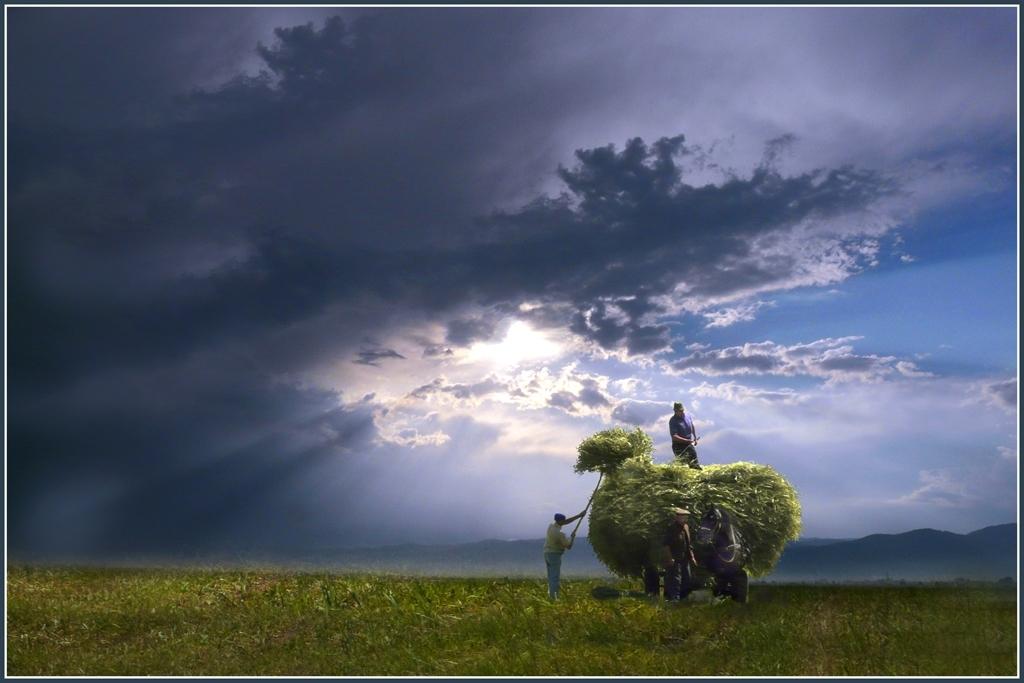 Venig Vasile AFIAP - Sub cerul frumos al Dumnezeului