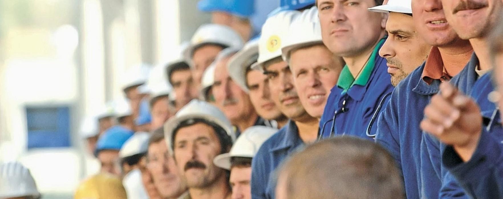 muncitori-1764x700
