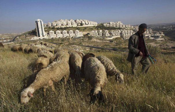 2012-05-22t090929z_1277804076_gm1e85m1b8r01_rtrmadp_3_palestinians-israel-jerusalem