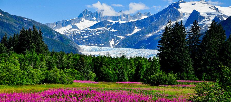 AlaskaGallery.MendenhalL2015