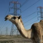 kuwait fara gaz