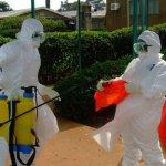 Măsuri drastice sunt necesare pentru stoparea virusului Ebola