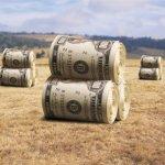 Apel urgent de finantare-bani pentru proiecte in agricultura sustenabila