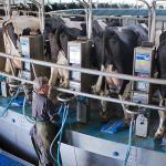 Sancțiunile rusești înfurie fermierii
