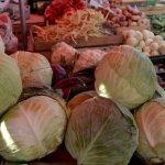 Rusia interzice importul de fructe şi legume din Polonia în războiul sancţiunilor