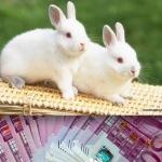 Incredibil, Oradea desfasoara o activitate fara COD CAEN-fabricare de bani falsi