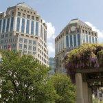 Argentina suspendă afacerea P & G