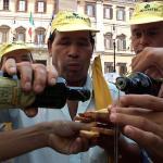 Muștele de măsline, problemă pentru fermierii italieni