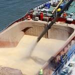 Rusia limitează exportul de cereale