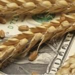 In sfarsit, in regula, proiectele pe fonduri UE din agricultura se pot cofinanta si de IFN-uri