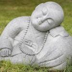Fondul Zen se dezvoltă magnific