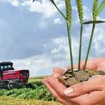 De maine 25 martie 2015, demareaza activitatea de finantare cu  fonduri europene pentru investitii in exploatatiile agricole