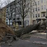 Uraganul Niklas asigură energie Germaniei pe linga ravagiile create