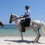 Marea Britanie cere britanicilor să părăsească Tunisia