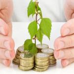 Din 8 iulie un sfert de miliard de euro pentru proiecte pe PNDR