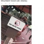 Disney interzice bastoanele selfie în toate parcurile tematice din întreaga lume
