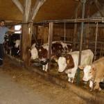 Se mai intimpla si minuni, unui tanar sibian i-a iesit in mod neasteptat un proiect de ferma pentru vacute