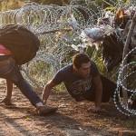 Profit din refugiați