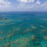 Marea Barieră de Corali nu se simte bine