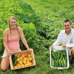 Banii europeni pentru instalarea tinerilor fermieri sunt pe terminate