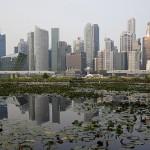 Singapore produce milionari
