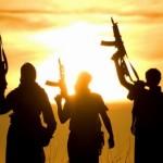 Frica mondiala a creat o noua arma in combaterea terorismului, la indemana tuturor
