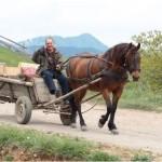 Zambetul zilei! Ion coboară pe Feleac cu căruţa …muerea şi pruncul lângă el