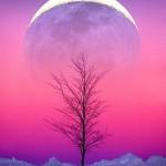 Horoscopul zilei de Luni 18 Ianuarie 2016