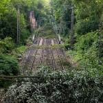 Deutsche Bahn se luptă cu copacii