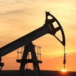 Prețului petrolului isi revine usor