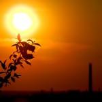 Noi cursuri de fotografie la Oradea
