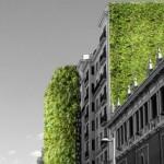 Madridul se îmbracă în plante pentru a combate temperaturile în creştere