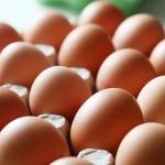 Nemții mănâncă mai multe ouă ca niciodată