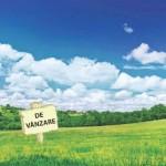 Strainii vor putea cumpara terenuri agricole in Romania, doar ca in Elvetia