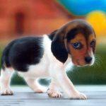 Grecia combate evaziunea fiscală cu ajutorul câinilor dresați