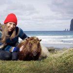 Sheep View pe oi în insulele Feroe