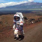 Un german a trăit un an ca și pe planeta Marte