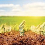 Speculatorilor de terenuri agricole li se pregateste ceva