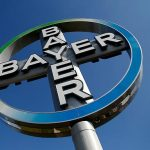 Bayer nu vrea porumb modificat genetic