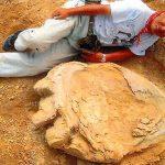 Urme uriașe de dinozaur descoperite în deșertul Gobi