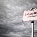Gripa aviară se extinde în Germania