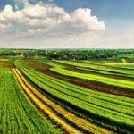 Schimbari in vanzarea terenurilor agricole